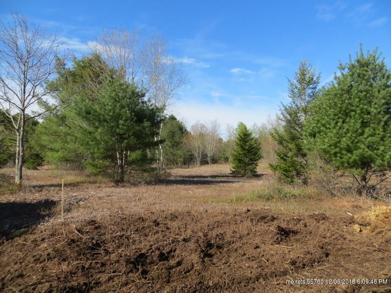 Lot 12 Rugosa Way, Brunswick, ME - USA (photo 5)