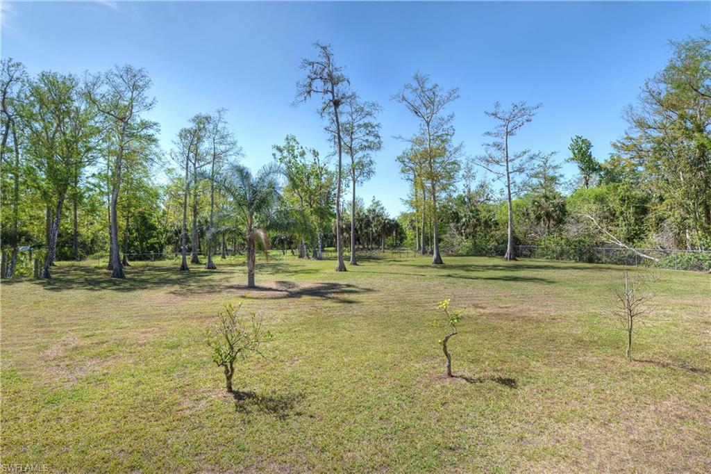 Additional photo for property listing at 4244 1st Ave Nw Naples, Florida,Hoa Kỳ
